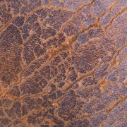 brown-crack-leather-texture